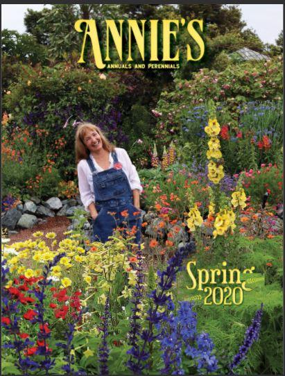 Annie's Annuals & Perennials catalog