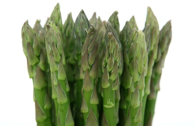 How to grow asparagus.