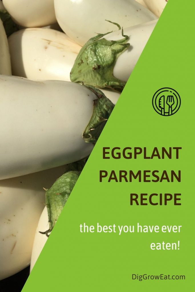 Eggplant parmesan recipe - the best you have ever eaten - made using white eggplant